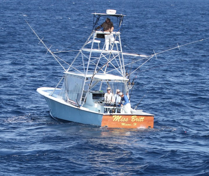 Swordfishing Charters