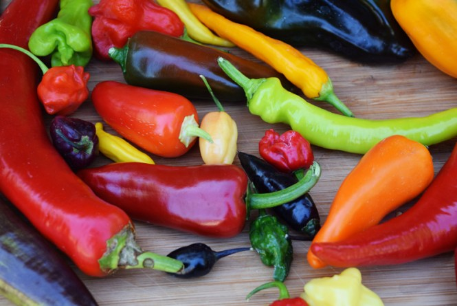 A colorful table full of chilies