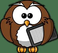 owl 158411  180