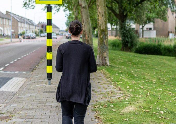 2x per dag een wandeling