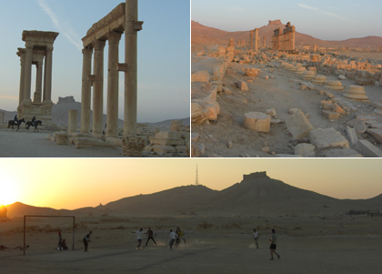 Palmyra and its surroundings