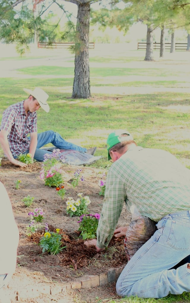 Tony and Cody planting flowers