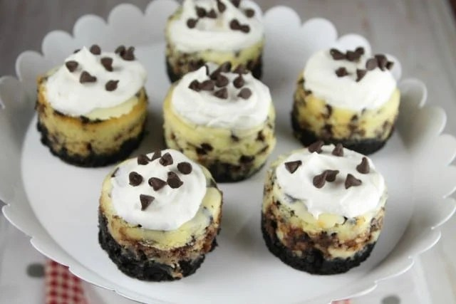 Mini Chocolate Chip Cheesecakes Recipe ~ MissintheKitchen.com