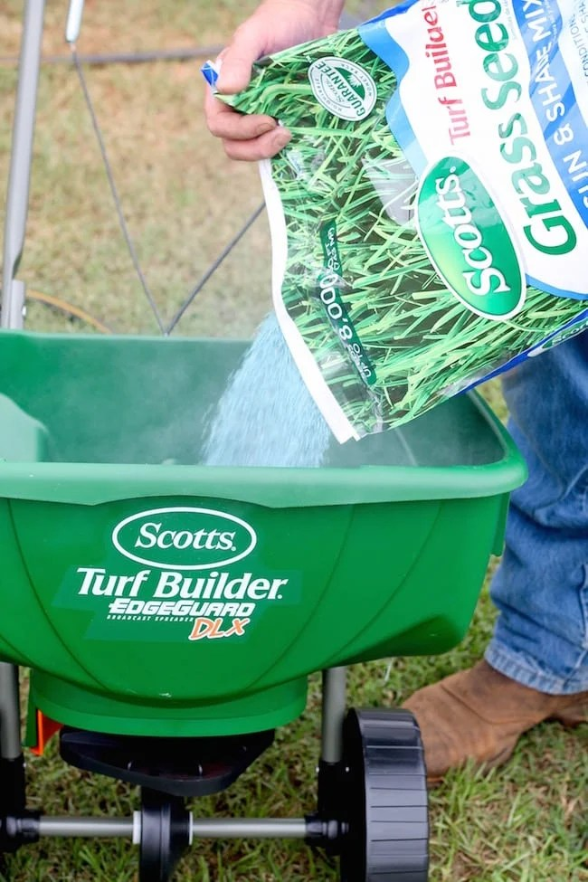 Scotts Turf Builder Grass Seed ~ Tips for Fall Lawn Care