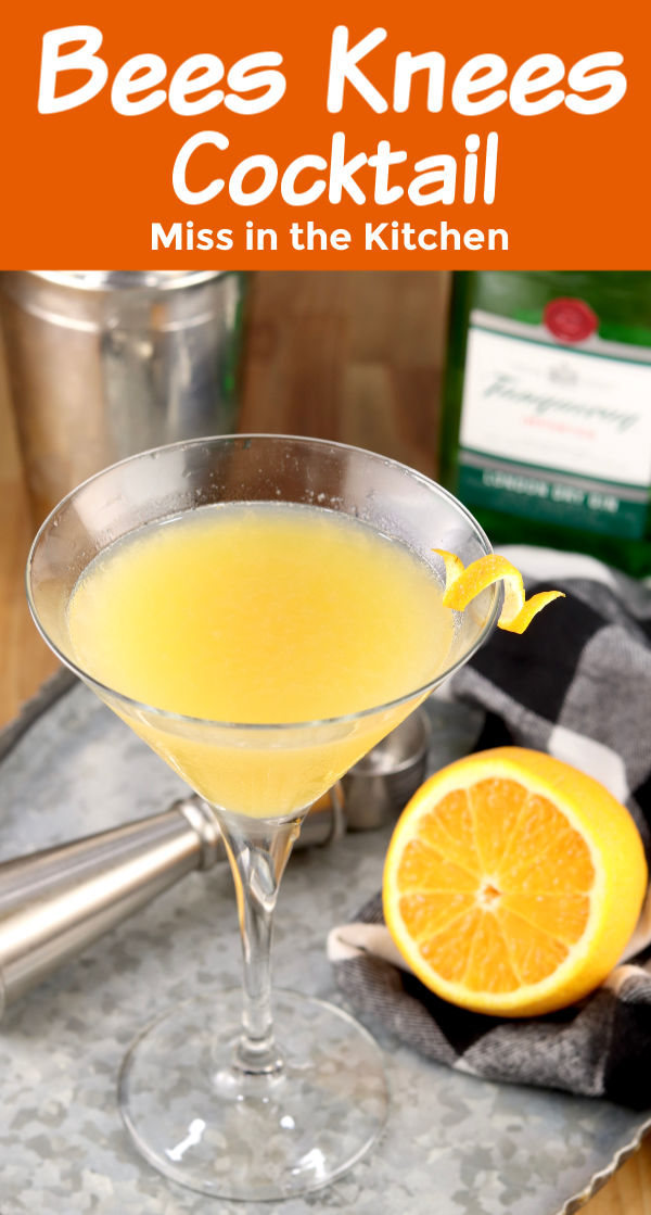Bees Knees Cocktail with Gin and lemon