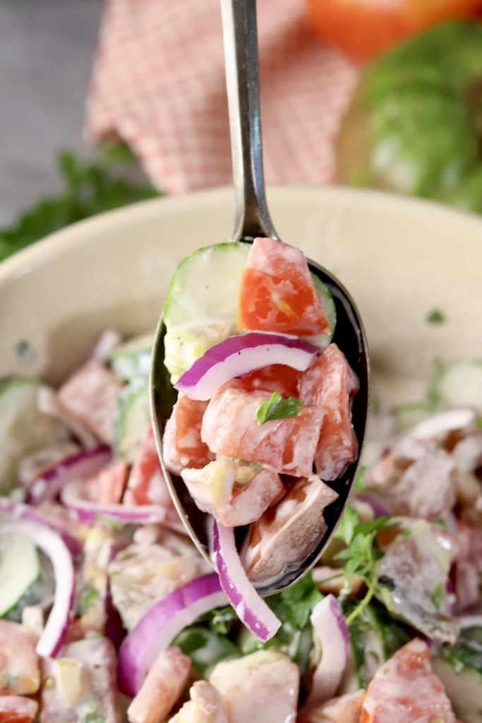 Spoonful of creamy cucumber tomato salad with red onion