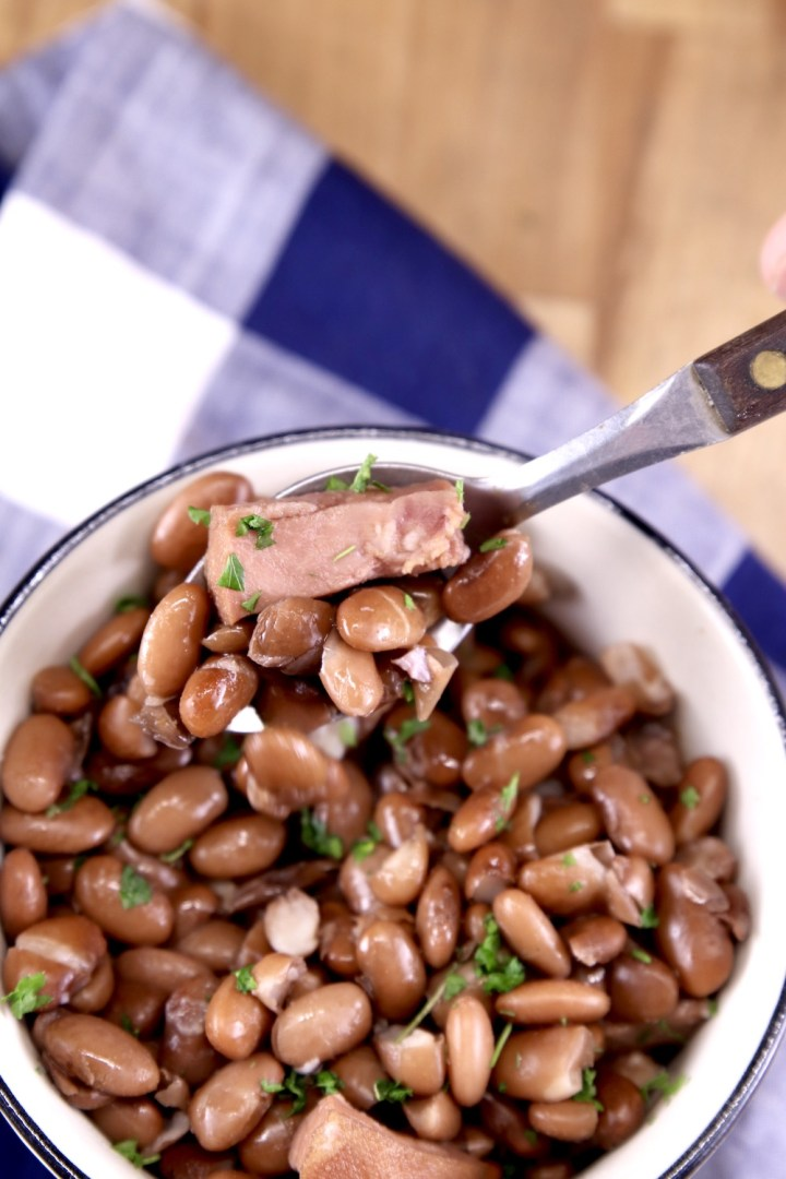 Pinto Beans in a bowl with ham