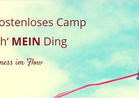 Business im flow - Online Camp von Petra Prosoparis