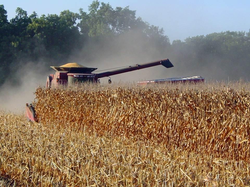 https://i2.wp.com/www.mississippi-crops.com/wp-content/uploads/2012/07/CornHarvest_Combine2.jpg