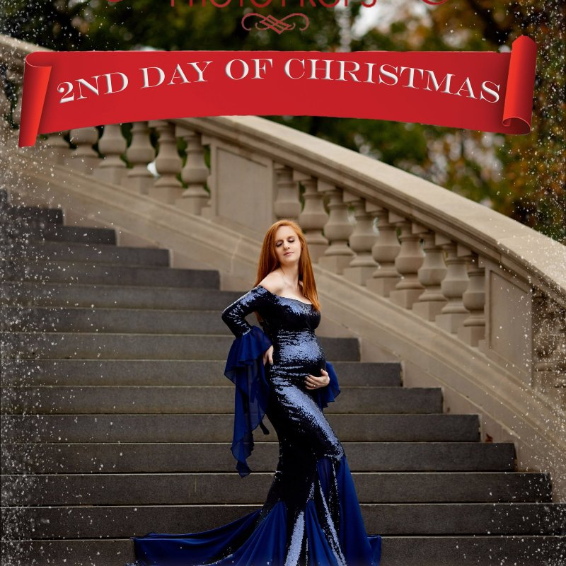 On the 2nd Day of Christmas……. Our New Gwendolyn Gown is 20% Off!
