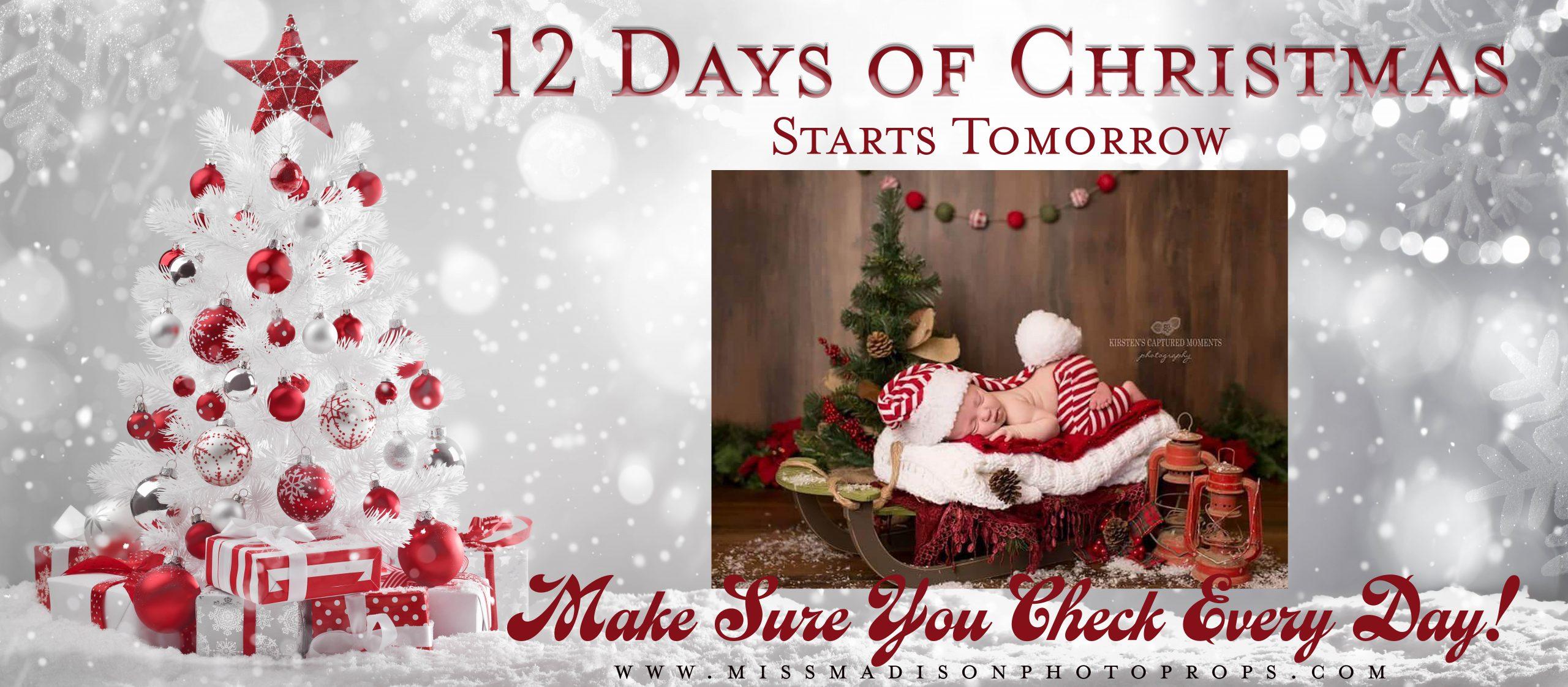 maternity dresses, 12 days of christmas, maternity gown, maternity dress, photography, photoshoot, babyshower dress, bridesmaid dress