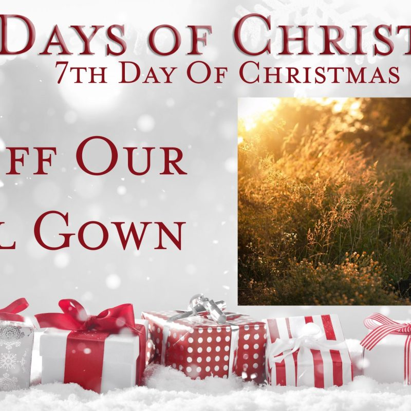 7th Day of Christmas