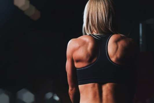 fitness programs workout