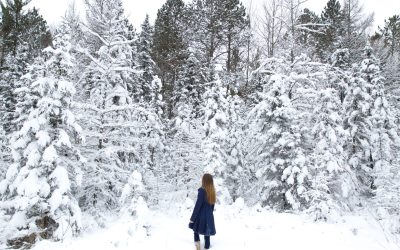 10 Tips for Surviving a Wisconsin Winter