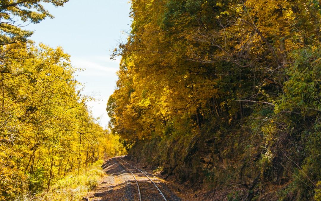 The Osceola Fall Color Train Ride