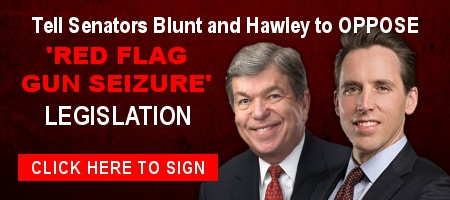 More Republican Senators Backing 'Red Flags' — Act Now!