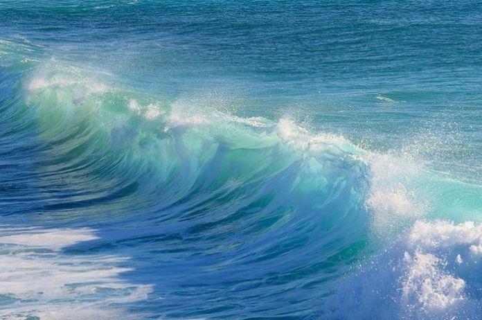 Terinspirasi Anatomi Tulang, Ilmuwan Kembangkan Membran untuk Tuai Energi dari Air Laut