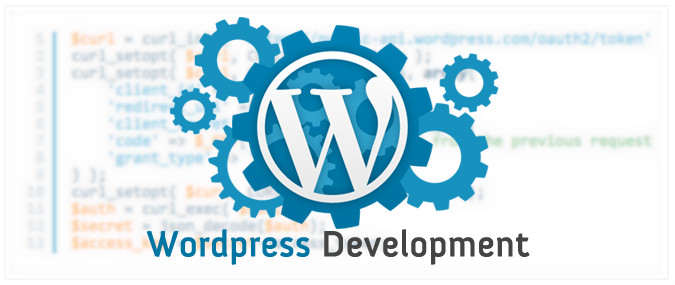 developpement wordpress expert