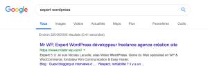 expert wordpress