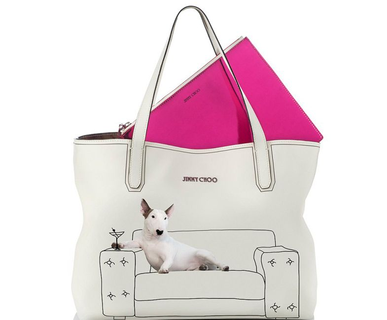 Jimmy Choo Dog