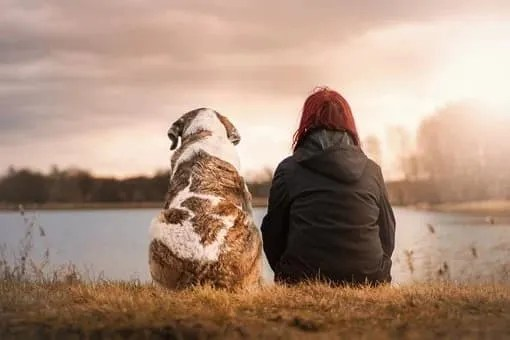 Dog walking services- girl and dog by lake
