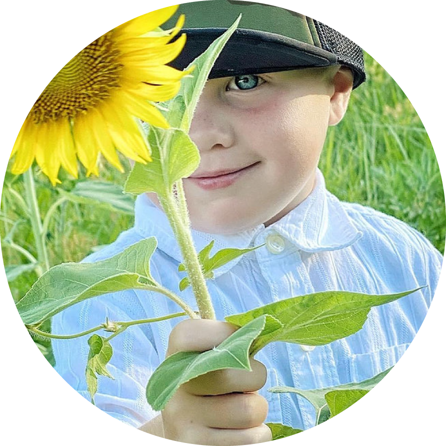Pick sunflowers in our field.