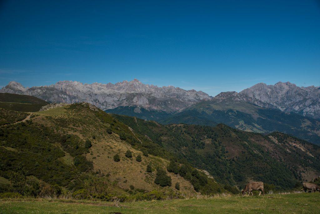 Collado de Llesba - Picos des Europa