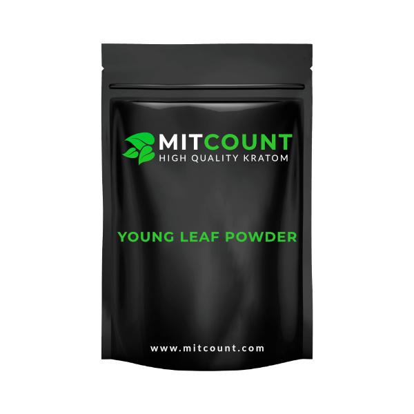 Young Leaf Powder Kilo