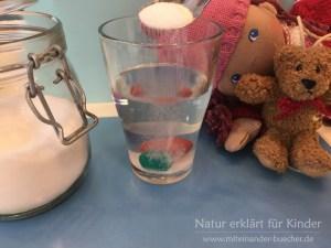 """Ein Experiment für Kinder: """"Eine Tomate taucht, schwebt, schwimmt""""."""