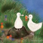 Advent auf der Albatrosinsel