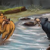 River Bears