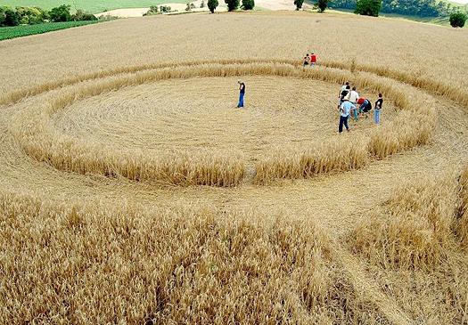 Crop Circle Ipuaçu SC