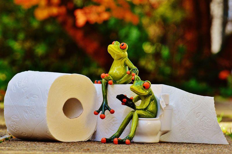 5 Tipps und Tricks, wie man Kindern die richtige Toilettenhygiene beibringt