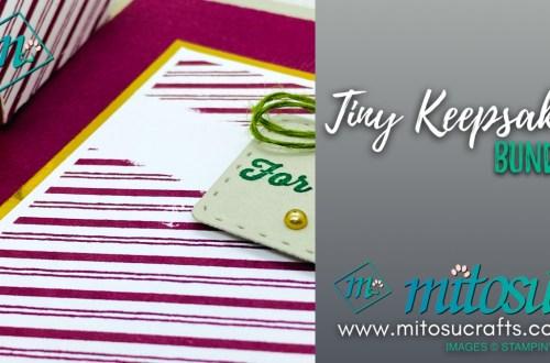 Tiny Keepsakes Card and Mini Curvy Box