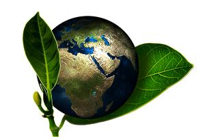 CSR-Tag