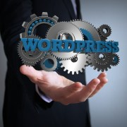 optimizacion-web-wordpress-mi-vida-freelance