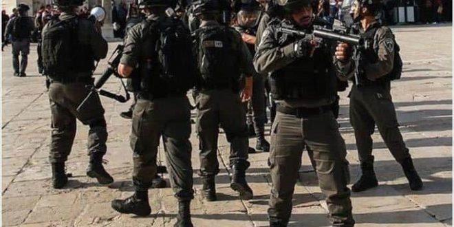 3 חשודים נעצרו לחקירה בחשד ליידוי אבנים ותקיפת שוטרים בהר הבית