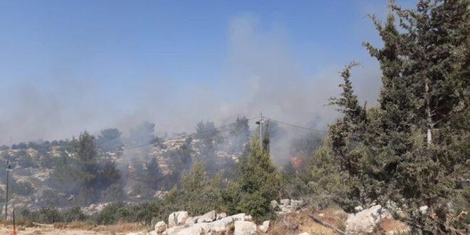 השריפה סמוך לאדורה: כלל הבתים של הישוב פונו