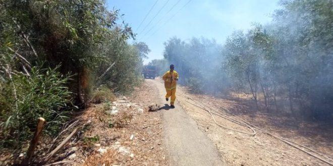 קרית אתא: תלמידים פונו מבית ספר עקב שריפת חורש, אין נפגעים