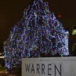 Warren's 2019 Tree Lighting Ceremony
