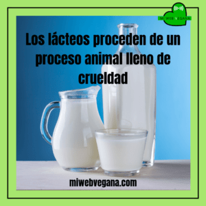 #hazte vegano #libredelacteos #respetoanimal #govegan #vegetarian #dairyfree #veganism