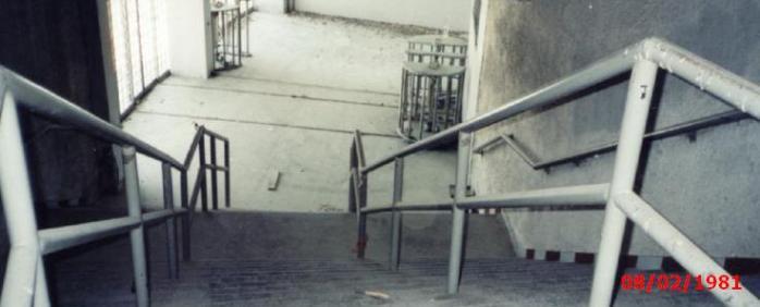 Thyra 7_1981