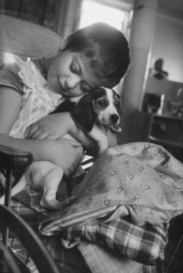 Το 1933, ήταν ο Φρόυντ αυτός που επανέφερε τη χρησιμότητα των ζώων στην ψυχολογική θεραπεία. Όποτε εξέταζε ασθενείς, τους άφηνε να παίζουν με τον σκύλο του, τον Τζόφι.