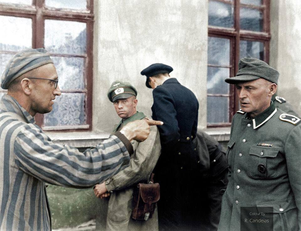 """""""Οι κρατούμενοι άρχισαν να κυνηγούν γερμανούς στρατιώτες και να τους ξυλοκοπούν μέχρι θανάτου"""". Συγκλονιστικές μαρτυρίες από την απελευθέρωση στα στρατόπεδα συγκέντρωσης"""
