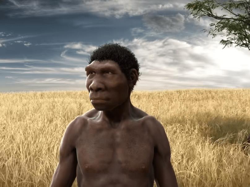 """Ο πλανήτης των πιθήκων. Πως εξαπλώθηκαν σε όλη την γη και εξελίχθηκαν. Νέα μελέτη ανατρέπει τα δεδομένα και απαντά ποιοι ήταν οι """"πρώιμοι"""" άνθρωποι"""