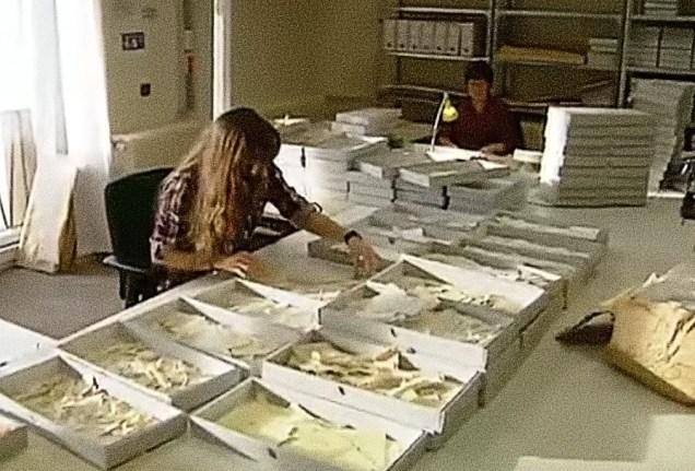 """""""Οι γυναίκες του παζλ"""". Ένωσαν εκατομμύρια κομματιασμένα έγγραφα για να δικαιωθούν τα θύματα του ανατολικογερμανικού καθεστώτος"""