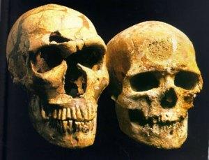 neanderthal vs cromagnon