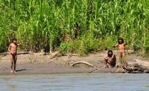 trib izolat in Amazonia