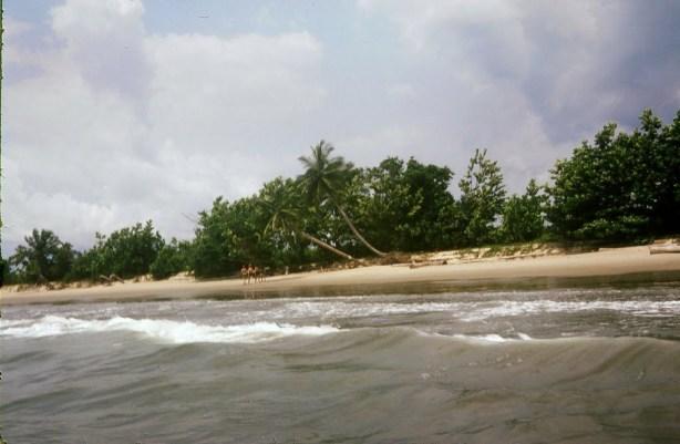 o parte din Guineea