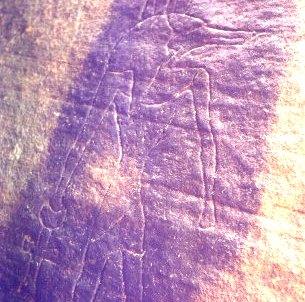 petroglifa din australia